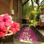 Spa & Wellness Pondok Sari
