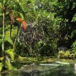 Pondok Sari Resort