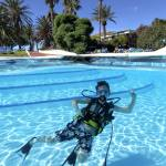 Introduction Dive & Courses