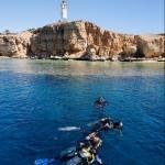 Dive Trip Ras Mohammed