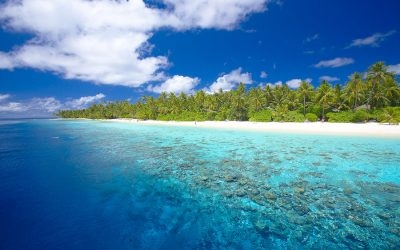 ber001348_from-the-reef-view-of-fili-3-