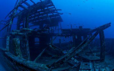 Malediven 2012 Filitheyo unter Wasser