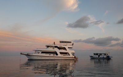 Malediven 2009