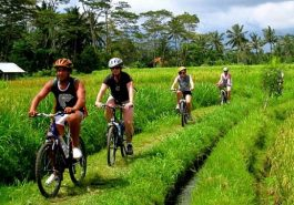 ber002144_cycling1-2