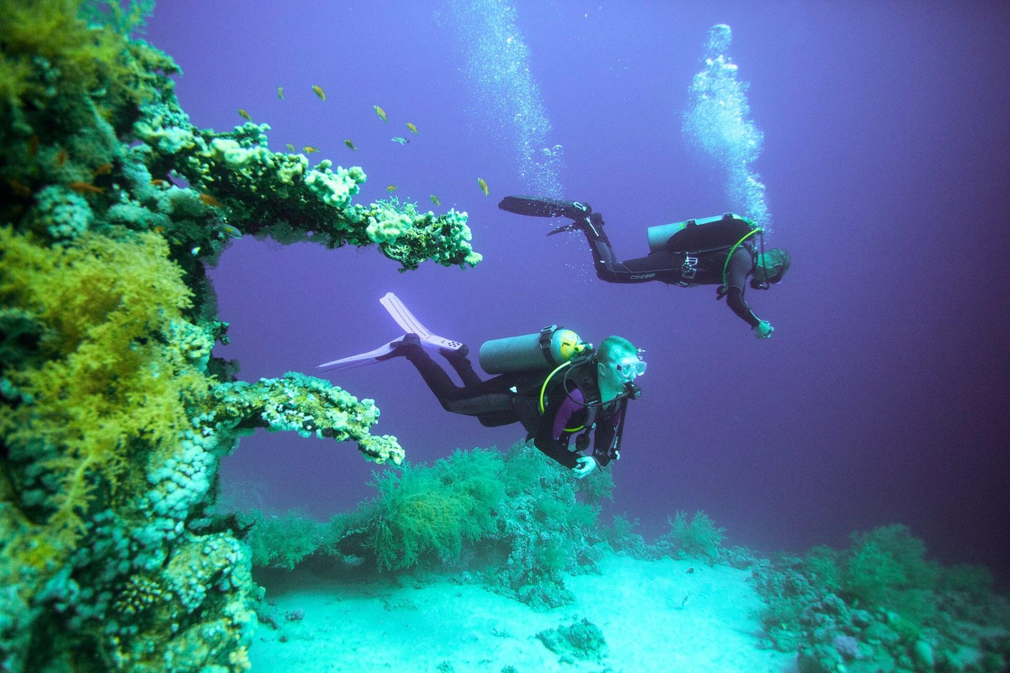 Red Sea Jobs Vacancies
