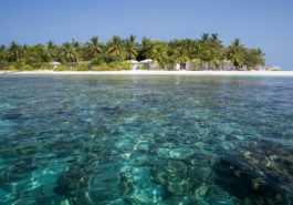 Sandies Bathala Maldives 54