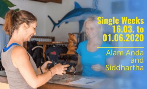 Single Weeks in Bali