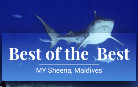 The Best of the Best Maldives 2020