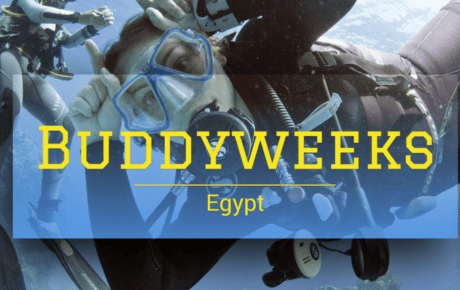 Buddyweeks Egypt 2019 – 2020