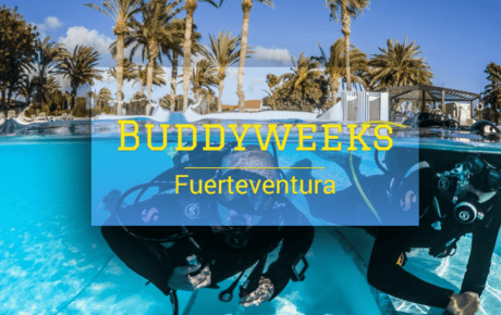Buddyweeks Fuerteventura 2019 – 2020