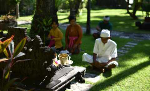 Temple Birthday