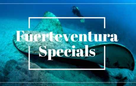 Fuerteventura Specials at a glance