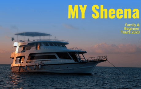 MY Sheena Family and Beginner Tours 2020