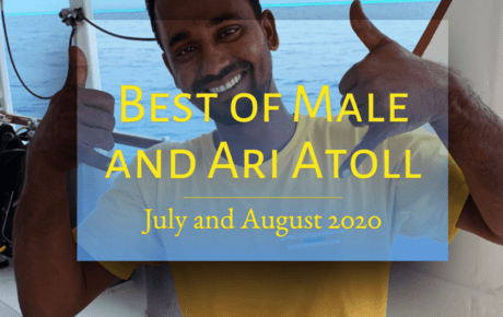 The Best of Male and Ari Atoll