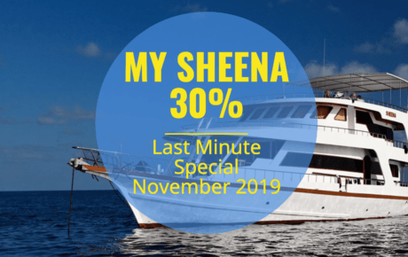 MY Sheena Last Minute Special November 2019