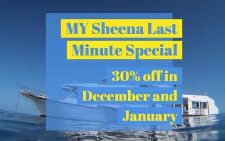 MY Sheena Last Minute Special Dezember 2019 und Januar 2020