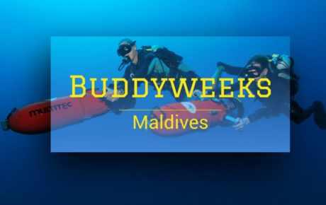 Buddyweeks Maldives 2020