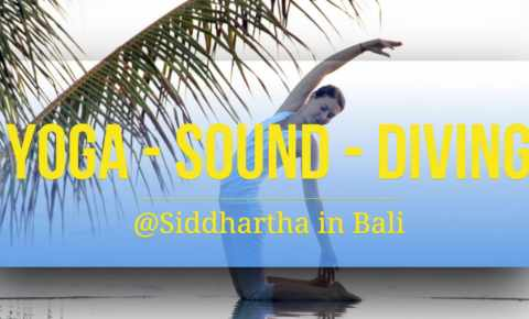 Yoga, Sound & Diving
