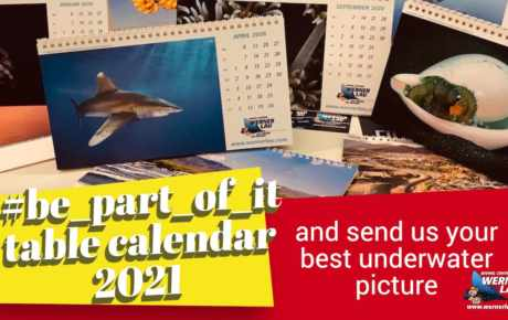 Table Calender 2021