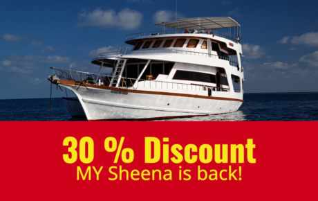 MY Sheena fährt wieder inkl. 30% Discount