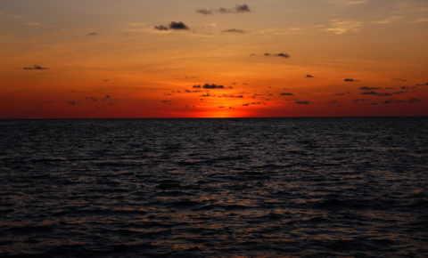 The Orange Horizon